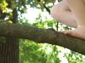 Video_CactusFlower_feettree