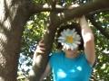 Video_FlowerGirl_tree