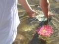Video_FlowerGirl_water